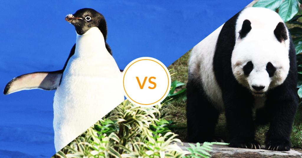 Pingwin versus Panda, który zwierzak namieszał w wynikach?