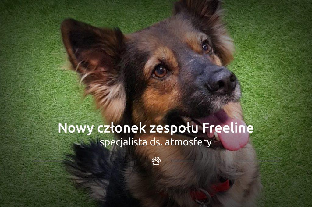 Nowy członek zespołu Freeline – specjalista ds. atmosfery